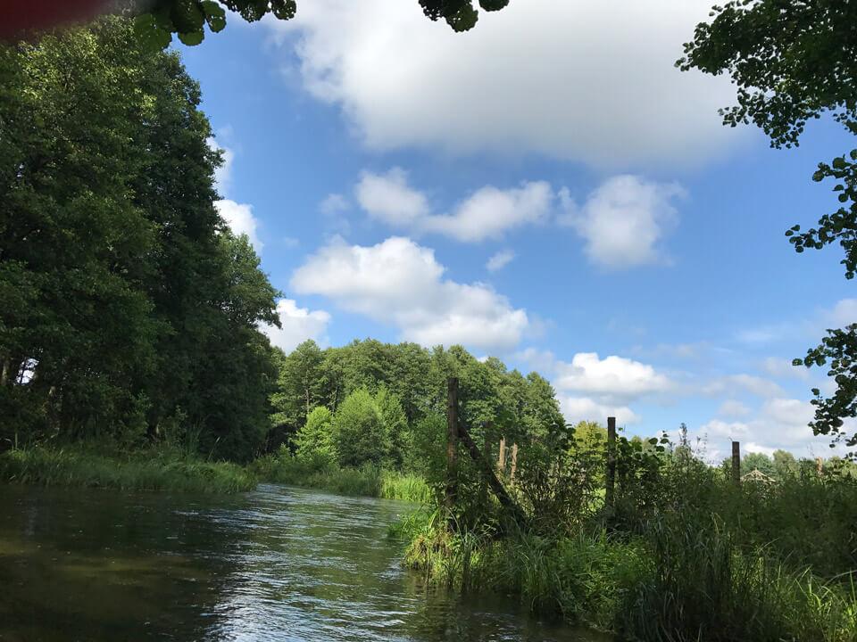 Canoeing - Borsk - Wojtal